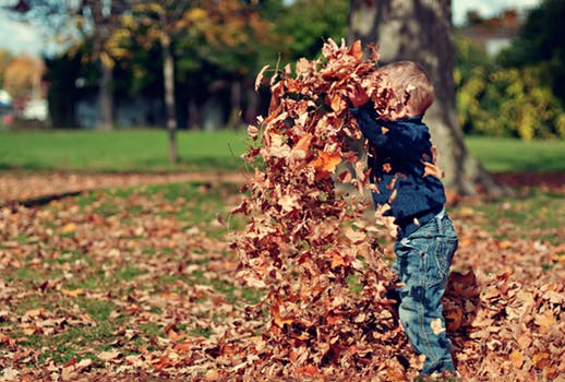 Kids playing leaves
